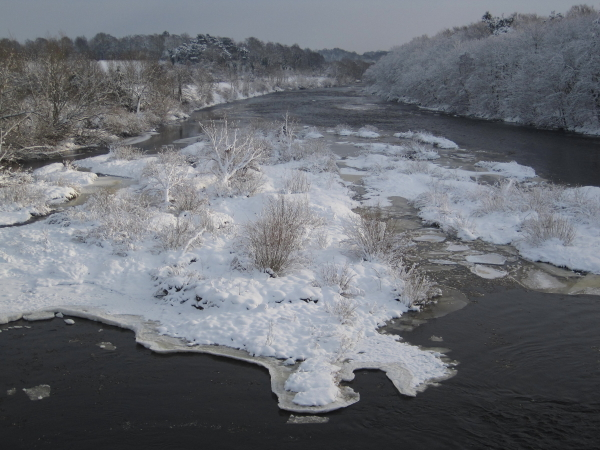 River Tyne at Corbridge