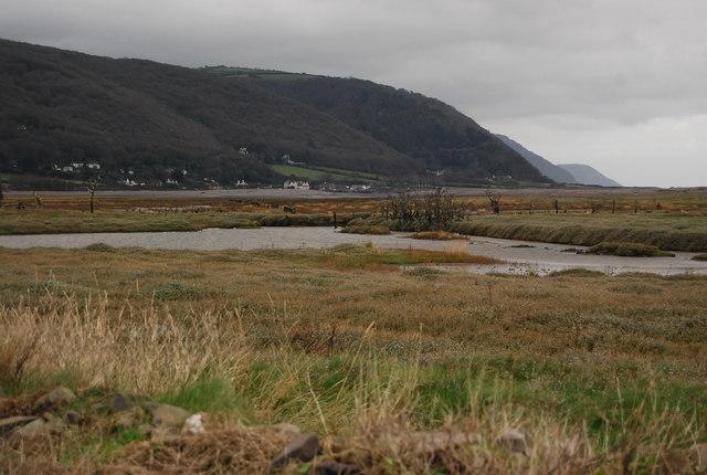 Salt Marsh near Porlock