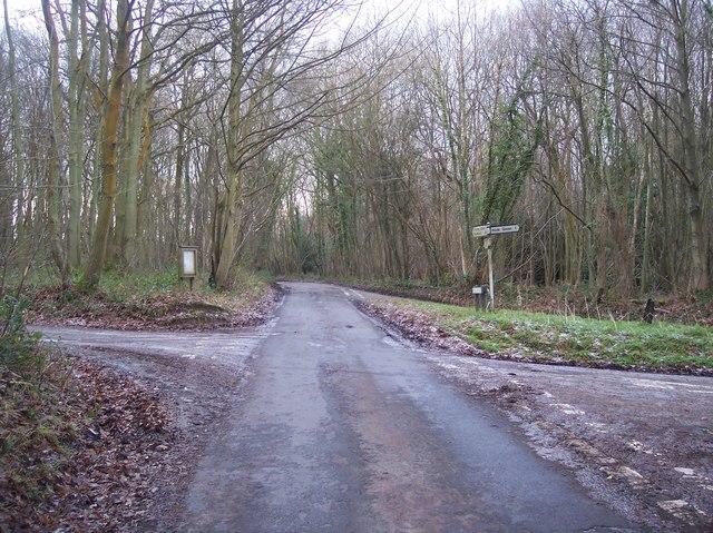 Crossroads in Free Heath