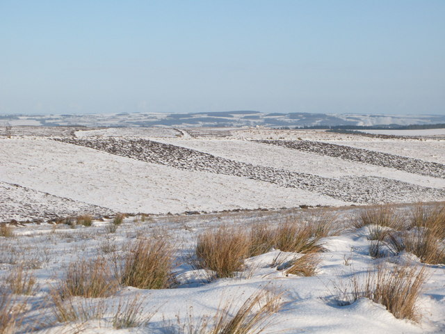 The snowy cleugh of Lawsley Sike (2)