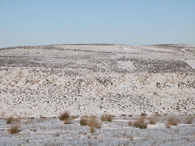 Snowy moorland below Great Lawsley (2)