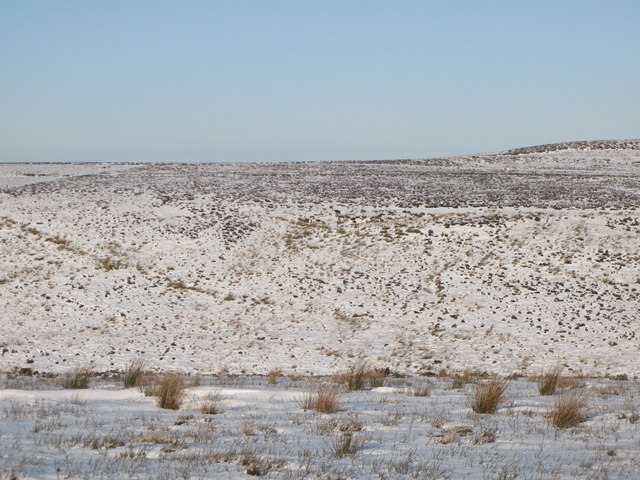 The snowy cleugh of Lawsley Sike (4)