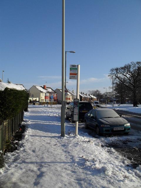 A snowy Purbrook Way (3)