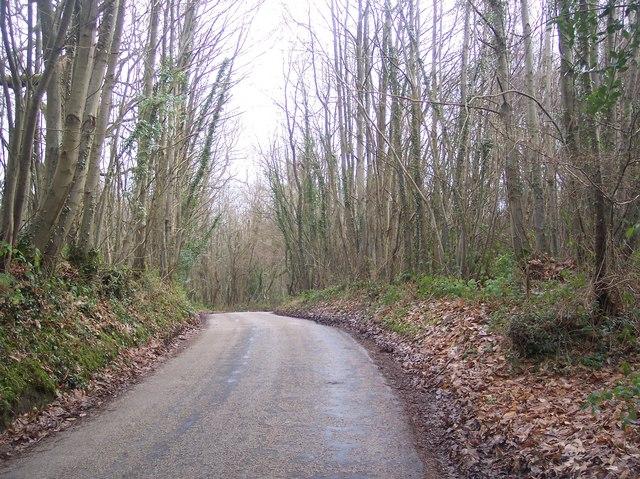 Free Heath Road in Rowland Wood