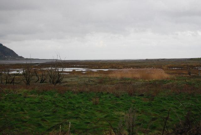 The marsh near Porlock Weir