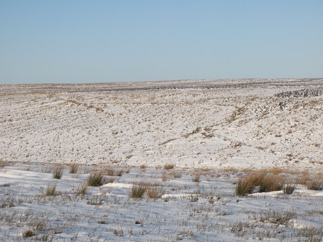The snowy cleugh of Lawsley Sike (6)