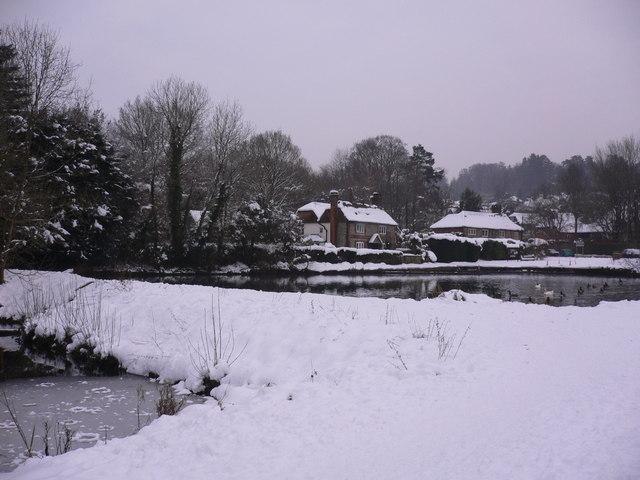 Shottermill ponds