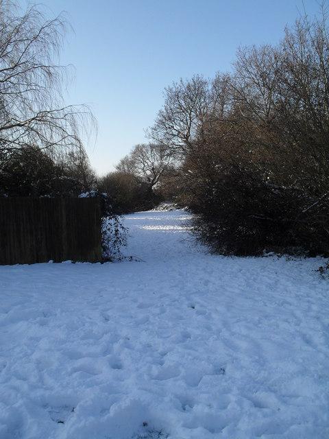 Snowy meadow between the Hermitage and Ellisfield Road