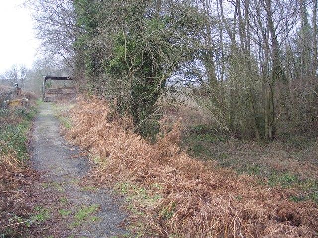 Footpath near Furnace Mill