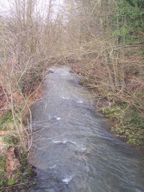 The River Teise near Hoathley Farm (2)