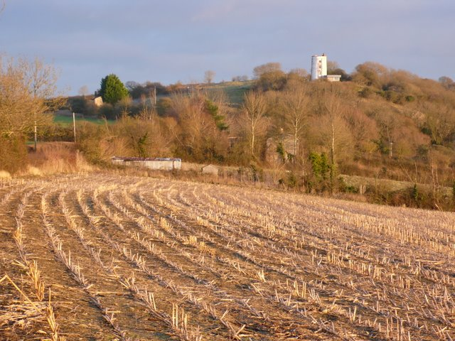 Countryside In the Polden Hills