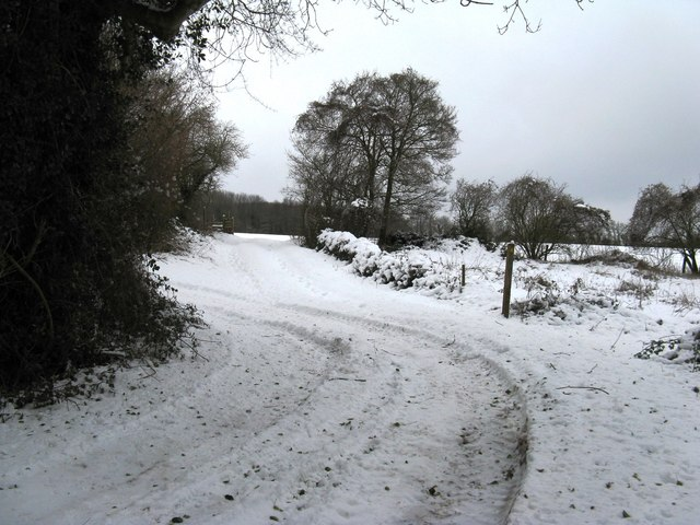 Footpath junction with farm track