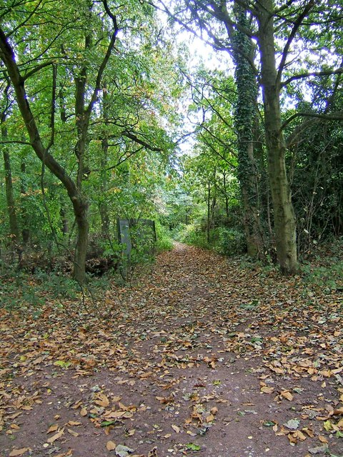 Public bridleway at end of Gothersley Lane