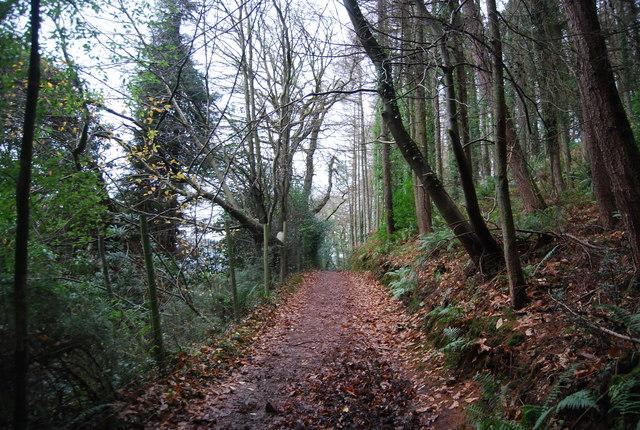 Footpath to Porlock