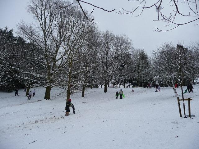 Tiverton : Snowy Hillside