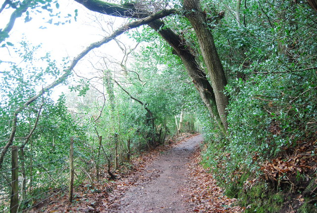 Footpath to Porlock, The Parks