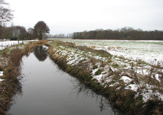 Snowy Claxton Marshes
