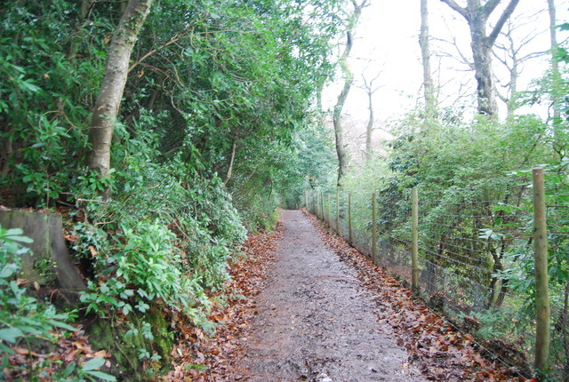 Track to West Porlock, The Parks