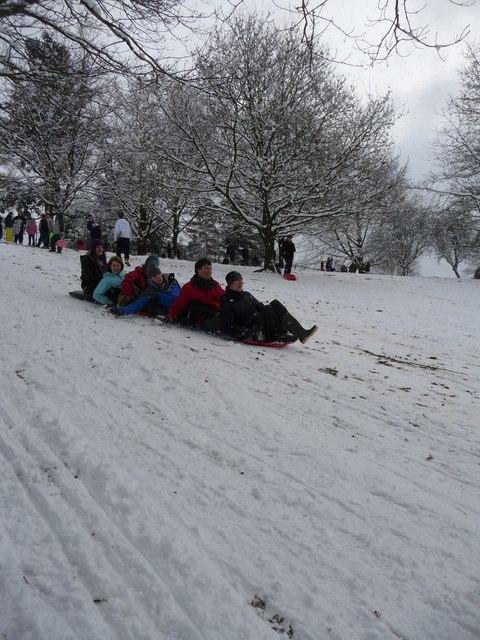 Tiverton : Sledging on the Hillside