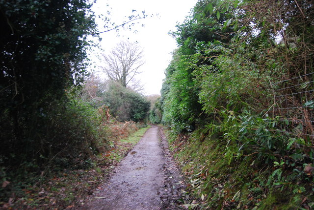 Track to Porlock, The Parks