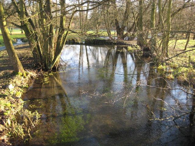 River Lambourn at Easton (2)