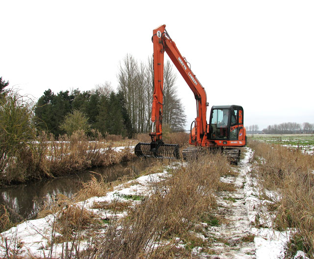 Clearing the stream bank (1)