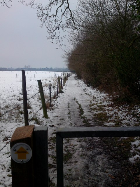 Strawberry Trail Looking SW towards Hound Road