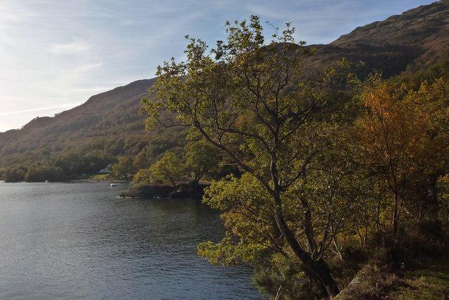 Shore of Loch Lomond south of Rubha Dubh