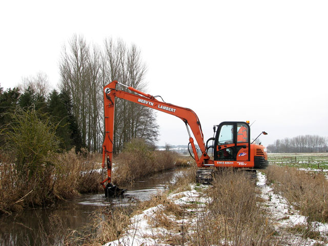 Clearing the stream bank (2)