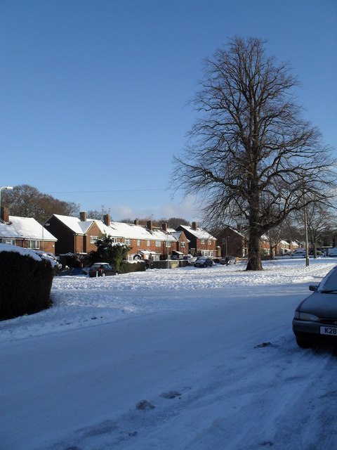 Snow covered green in High Lawn Way