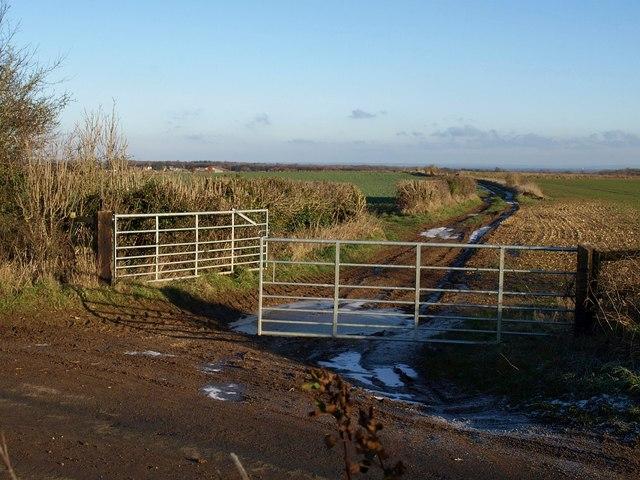 Gates on Highfield Lane