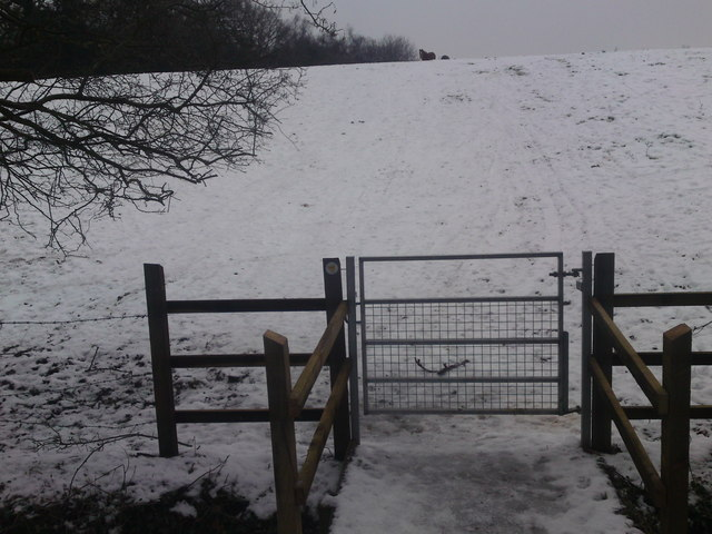 Start Footpath At Hound Road Path bears Left and Follows Edge of Field
