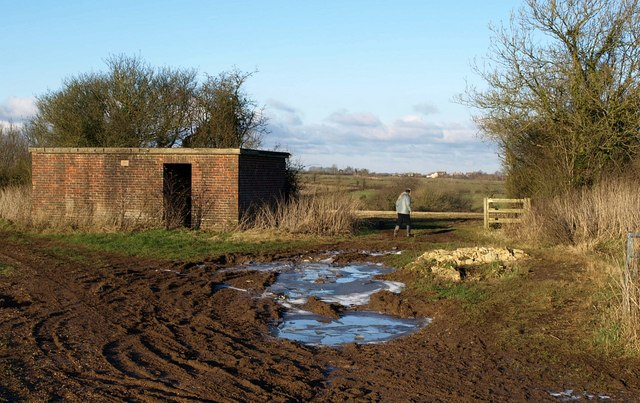 Hut and iced puddles by Highfield Lane