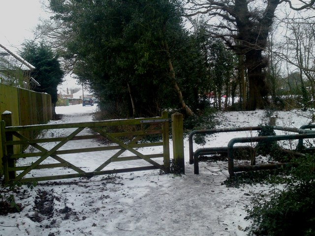 Entrance Gate to Priory's Hill Copse From The Grove Butlocks Heath