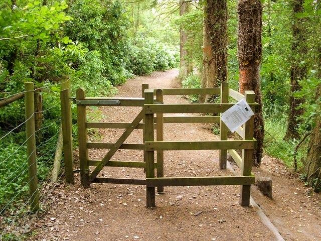 The Clyde Walkway entering Big Wood