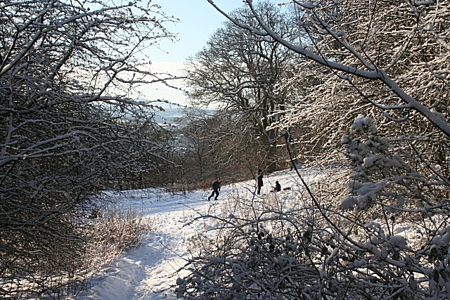 On Corstorphine Hill