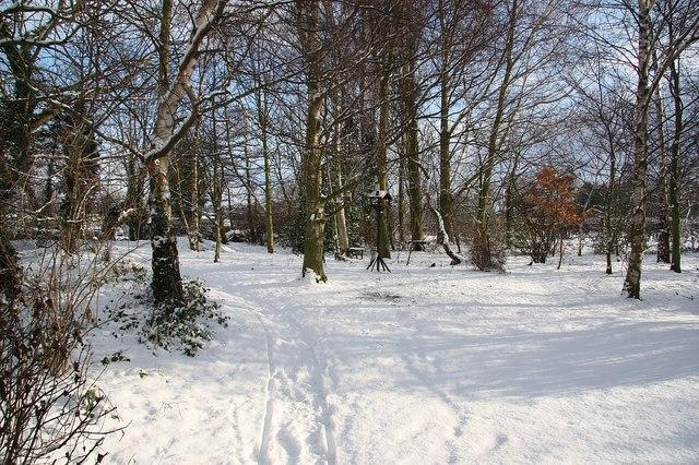 Jowett's Wood