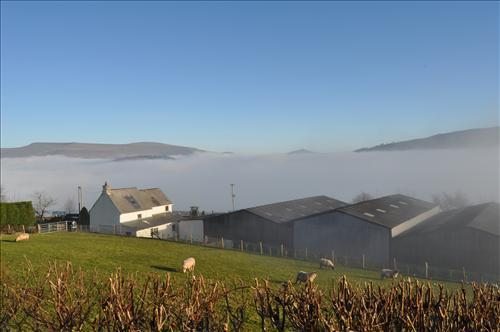Misty Valley
