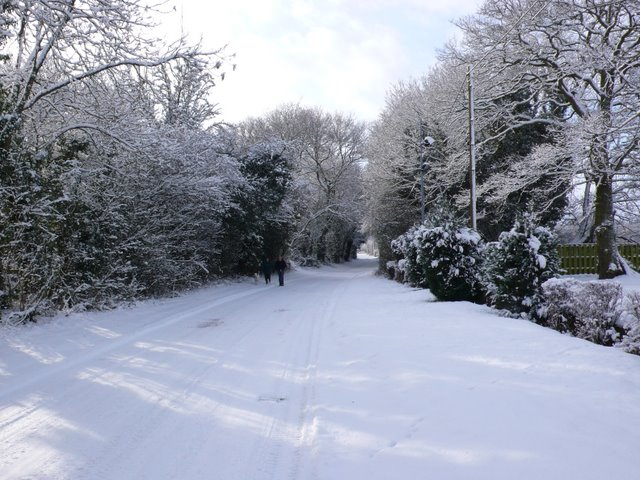 Snowy Lane at Newlands