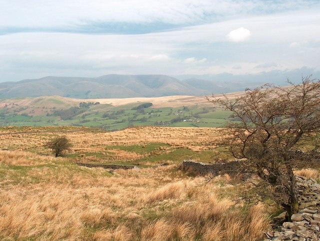 Rough pasture near Flinter Gill