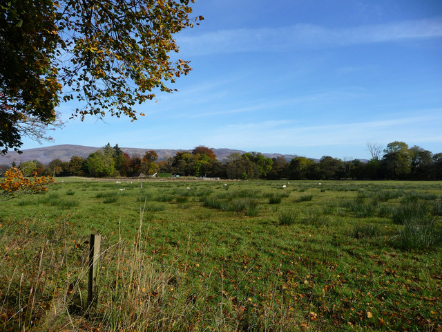 Grazing land south of Luss village