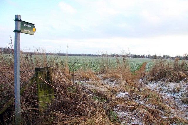 Footpath to Burcot
