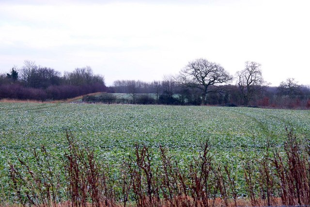 Arable fields by the A4074
