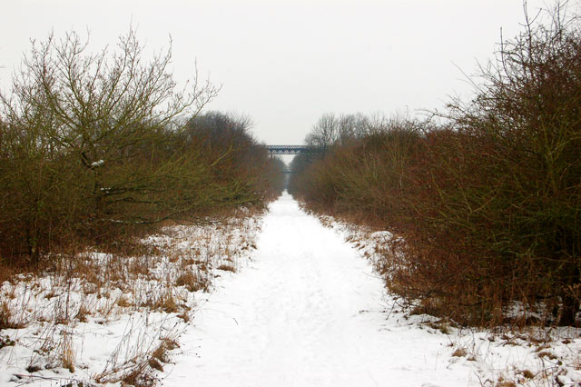 Dismantled railway trackbed in the snow (2)