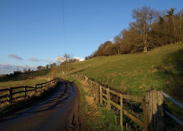 Lane to Hawkesbury