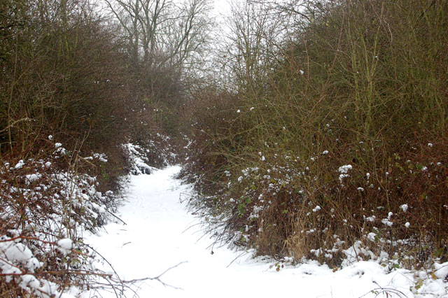 Dismantled railway trackbed in the snow (3)
