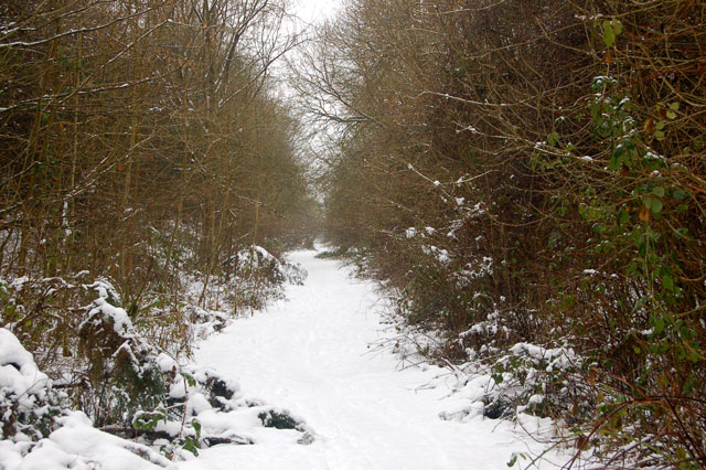 Dismantled railway trackbed in the snow (4)