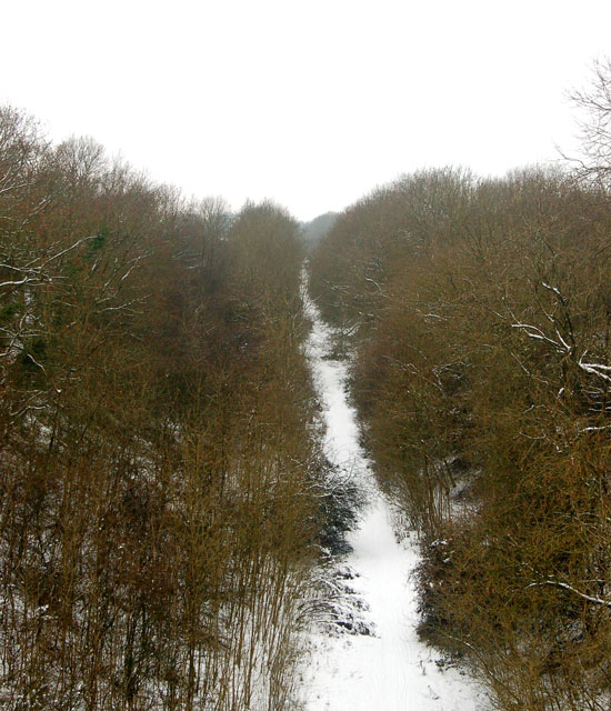 Dismantled railway trackbed in the snow (5)