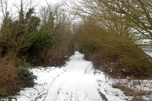 Looking north along Ridgeway Lane in the snow