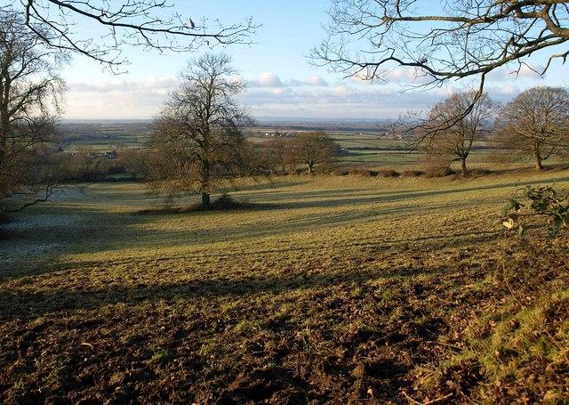 Field near Horton Hill
